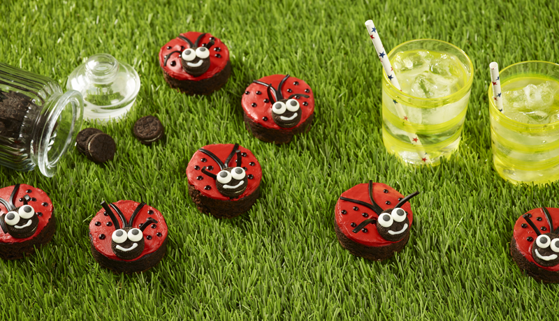 Ladybird Brownies